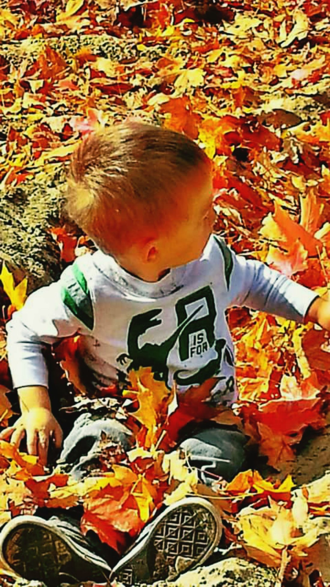 EyeEmNewHere Buried Treasure Autumn Leaf Outdoors Grandson Enjoing The Nature Nature Sunny Day Making Memories