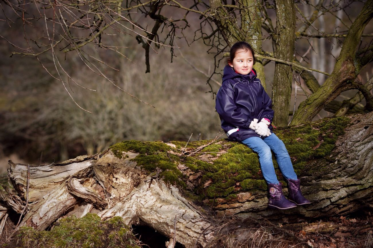 My Little Girl Tree Trunk Dunes Dutch Landscape Rays Of Light Sunshine Moss