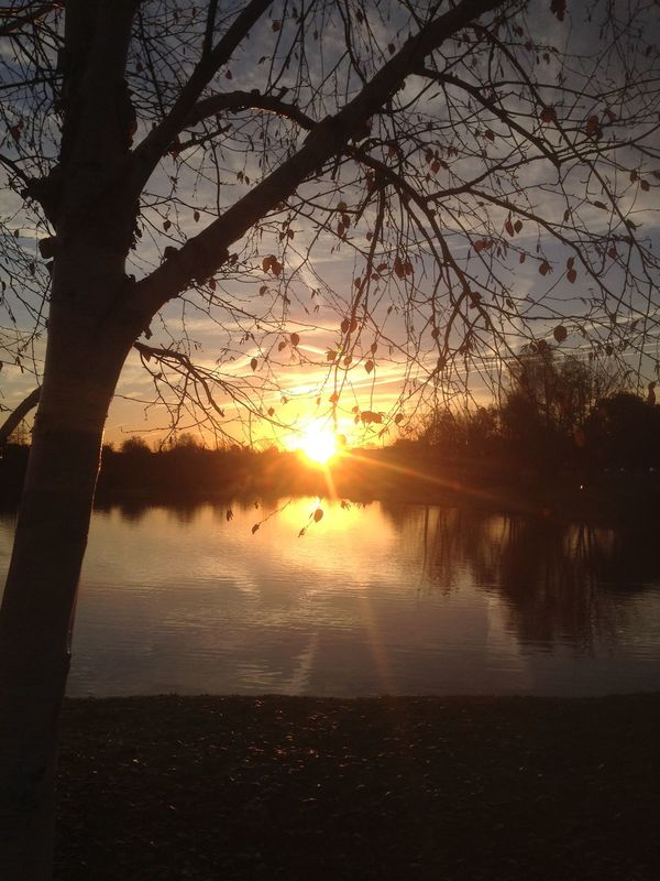 The EyeEm Facebook Cover Challenge Sunrise Water Reflections Nature Lake View Beautiful
