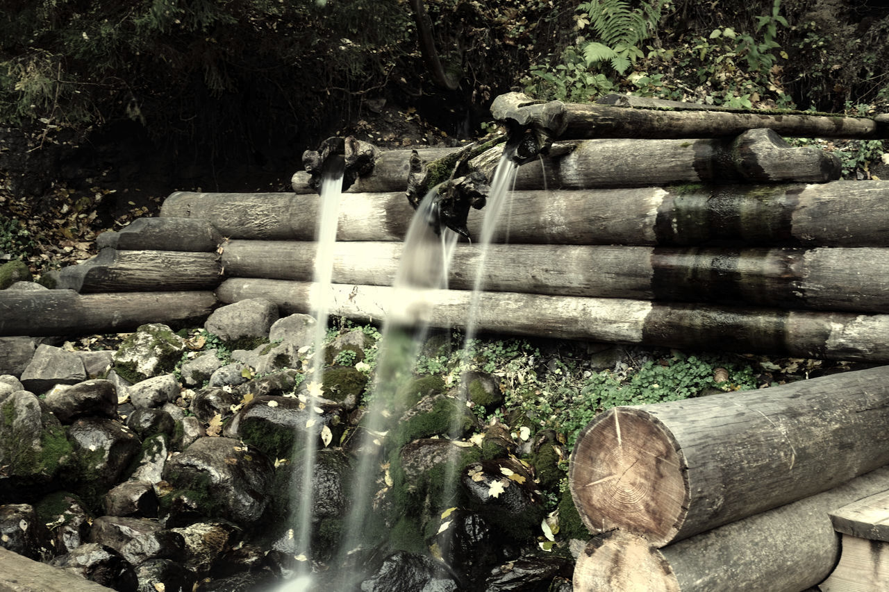 Beauty In Nature Day Forest Nature No People Outdoors Pipe - Tube Plant Spring Spring Water Water Waterfall Wood - Material The Great Outdoors - 2017 EyeEm Awards
