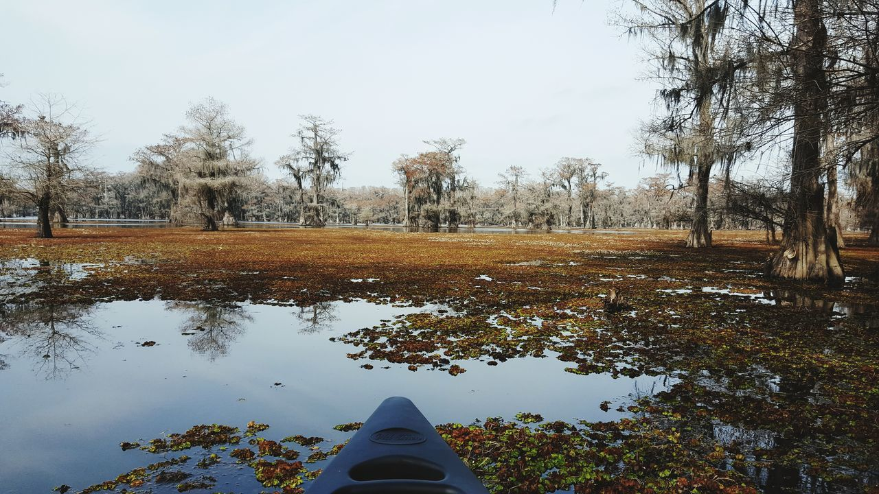 Reflection Nature Water No People Beauty In Nature Caddo Lake Canoeing Canoe And Water The Great Outdoors - 2017 EyeEm Awards