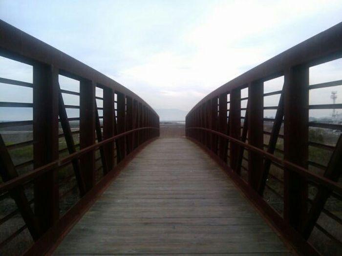 Taking Photos, hiking, shoreline, bridges, trails Enjoying Life