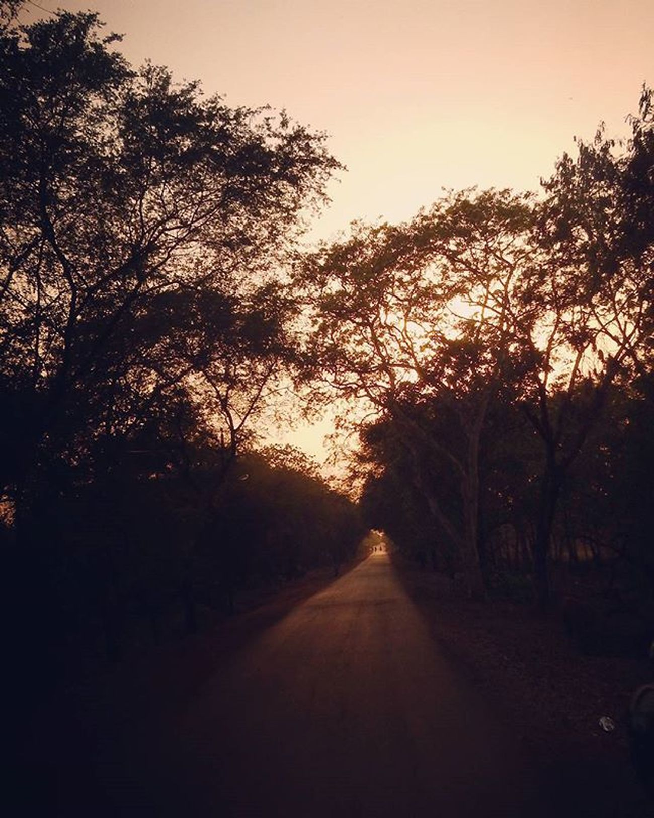 The Lost Way of Life! 💓 Nofilter EditLESS Photographers Sunset Road Dark Nikon_photographs Nikonphotography L820 Old_one Lovin_it Instadaily Photographyislife Nature_seekers Photographybros ✌