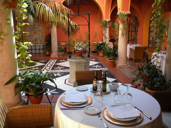 Andalucía Arrangement Chair Decoration Indoors  Patio Potted Plant Restaurant SPAIN Table