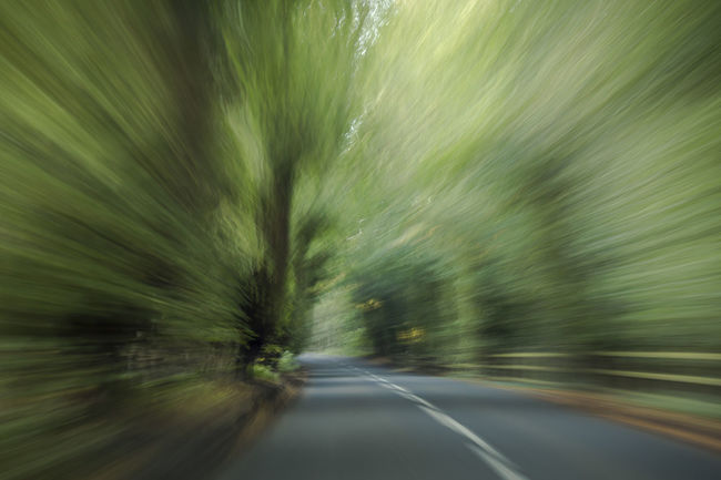 Diminishing Perspective Eye4photography  EyeEm Best Shots EyeEm Gallery Green Motion Nature Road Speed Vanishing Point