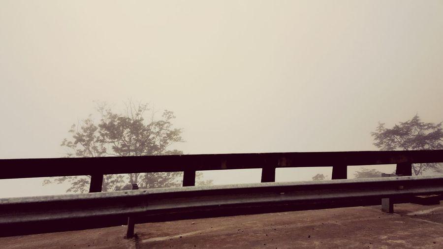 Foggy Day Foggy Landscape Borneo Sabah Bridge - Man Made Structure Railing Tree Copy Space Outdoors No People Sky AI Now