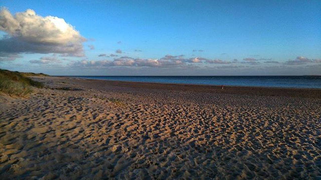 Texelstrand Natur Strand Meer Danke an mein Schatz. So konnte ich das Meer wenigstens sehen. 25.10.15 Sand & Sea