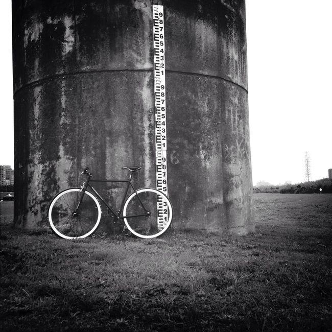 騎車救台灣 Fixie Fixed Gear Bike