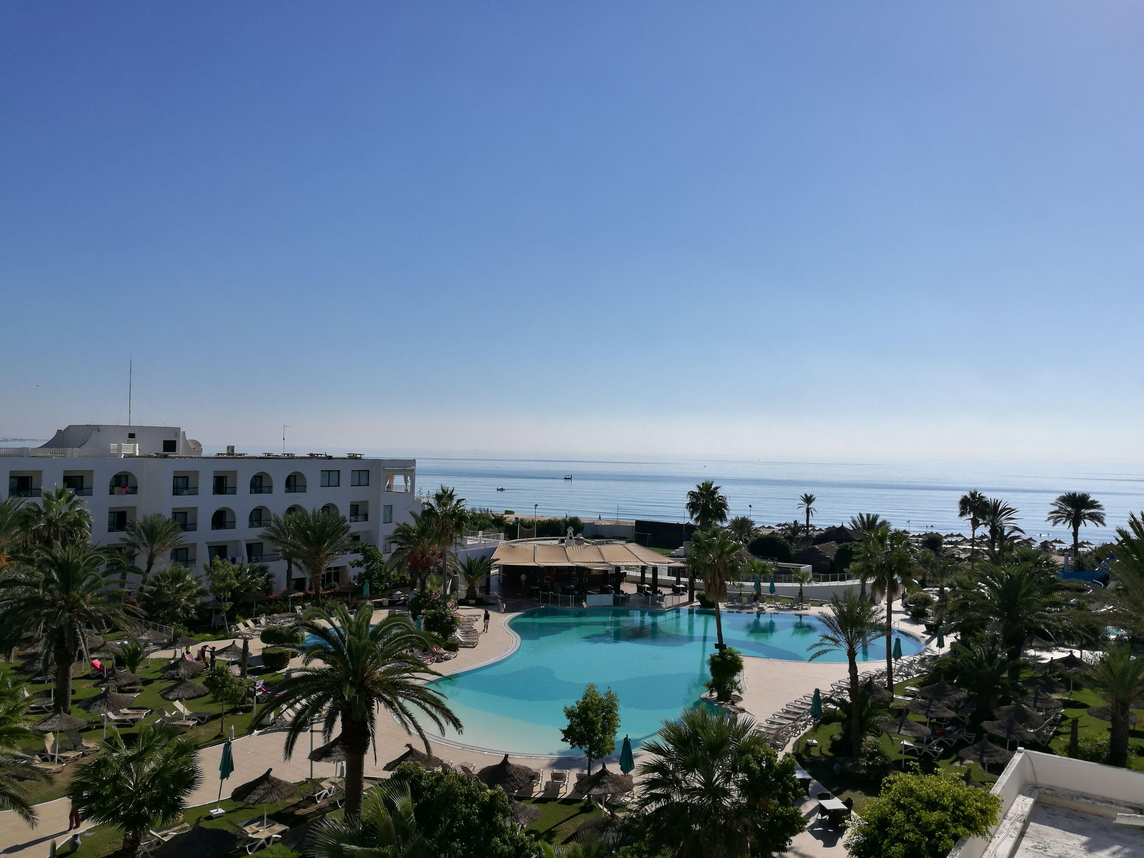 Sea Beach Water Tourist Resort Palm Tree Day Hammamet Tunisia Pool