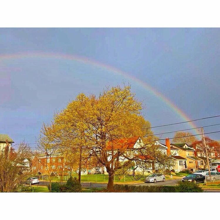 Taking Photos Check This Out Rainbow Beautiful Outdoors Bright