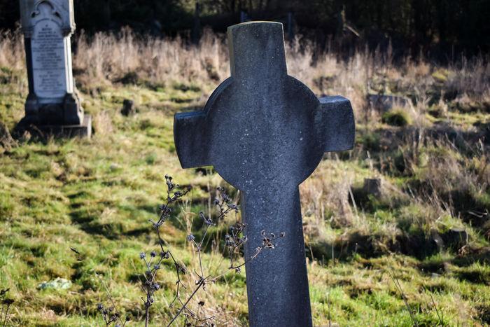 Circle Of Life And Death Death Foliage Granite Grass Grave Gravestone Graveyard Graveyard Beauty Graveyard_dead Graveyardphotography Life From Dea Stone