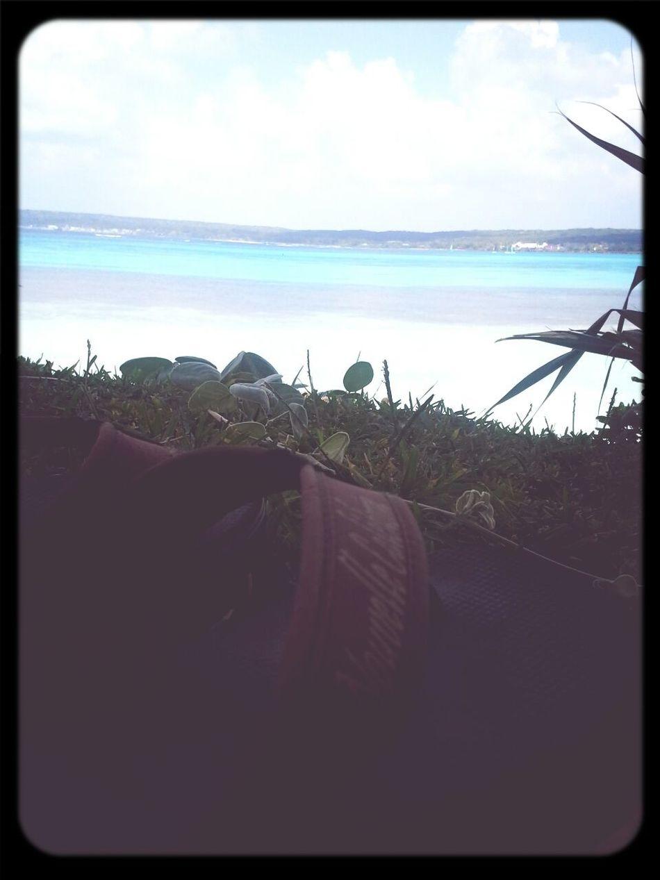 Lifou 2014 New Caledonia Sea View Lifou Beach