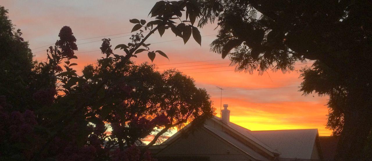 Sunset in Suburbia