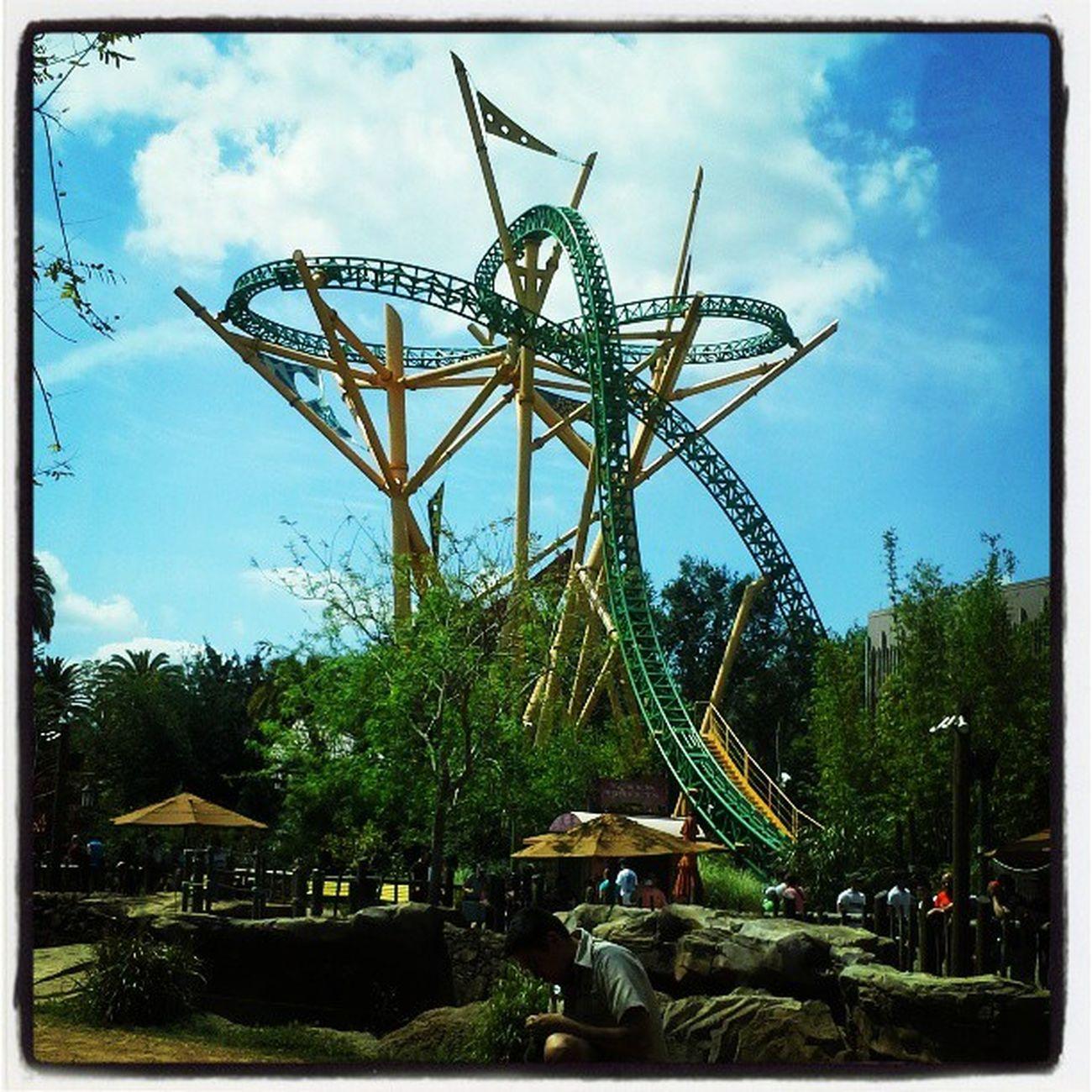 Tourist Florida Coaster Rollercoaster Busch Pixoddinary Pixoddinary_c6