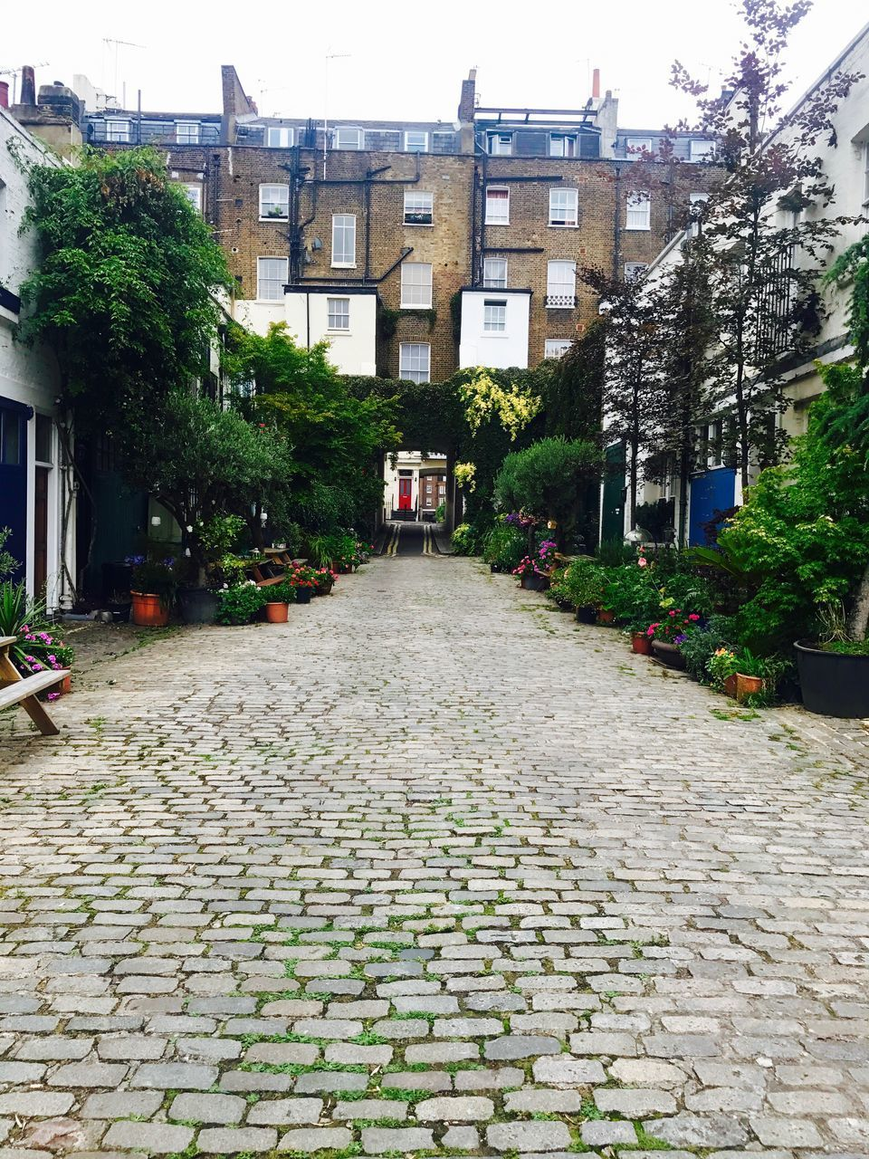 architecture, cobblestone, building exterior, built structure, street, the way forward, outdoors, tree, day, no people, city, sky