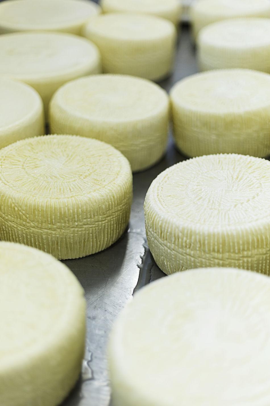 Cheese Dairy Dairy Farm Fresh Cheese  Italian Italian Cheese Italian Food Italy Making Making Cheese Milk Mozzarella Ricotta Ricotta Cheese