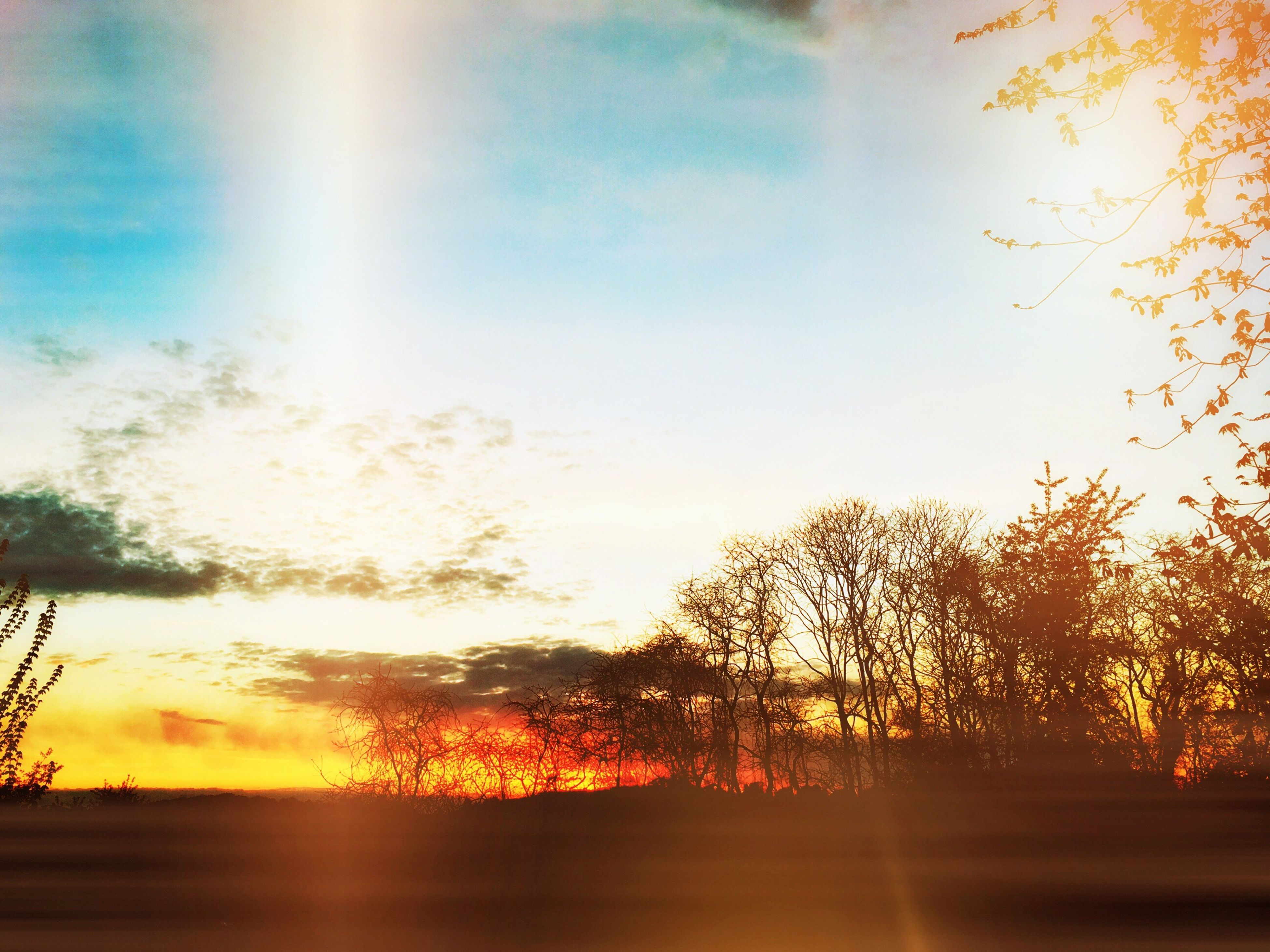 sunset, sun, tree, tranquil scene, tranquility, scenics, sky, beauty in nature, silhouette, nature, orange color, idyllic, sunlight, sunbeam, cloud - sky, lens flare, growth, landscape, cloud, back lit