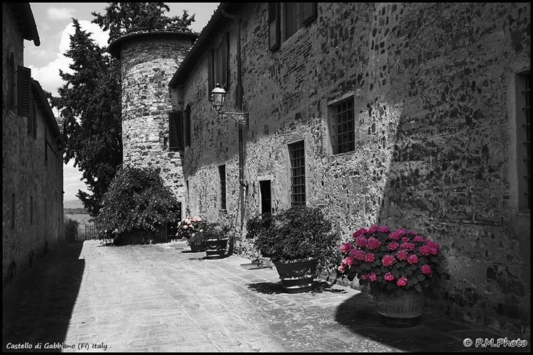 Blackandwhite Black And White Tuscany Colorsplash