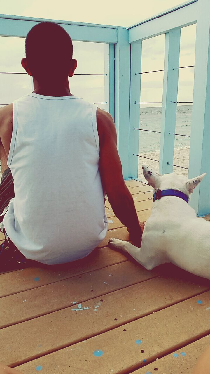 real people, men, one animal, indoors, domestic animals, pets, mammal, one person, hardwood floor, relaxation, leisure activity, home interior, full length, day, women, friendship, people