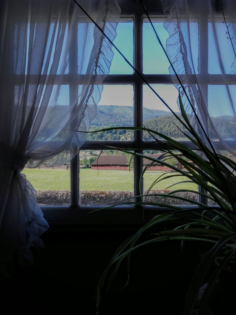 window, no people, day, nature, sky, landscape, sea, outdoors, beauty in nature, water, close-up, greenhouse