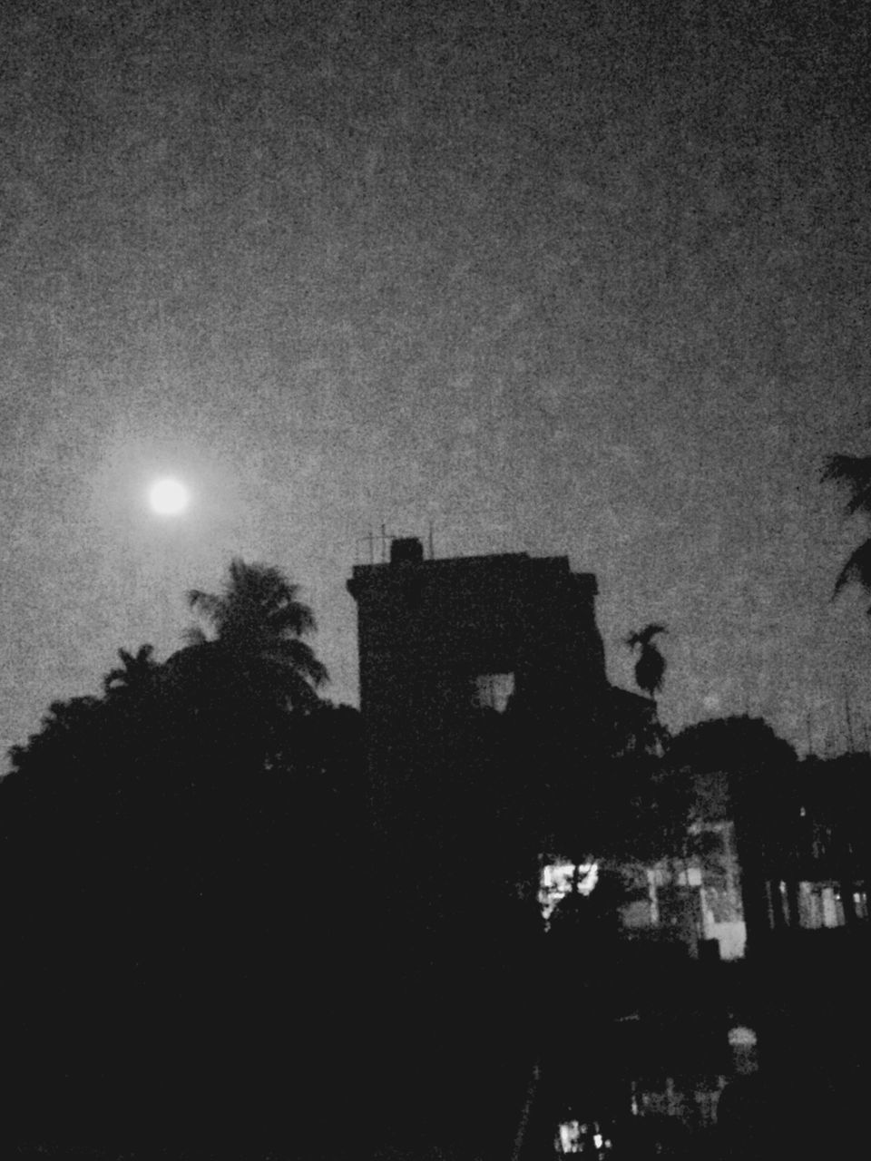 night, moon, outdoors, building exterior, built structure, architecture, silhouette, sky, no people, low angle view, tree, illuminated, nature