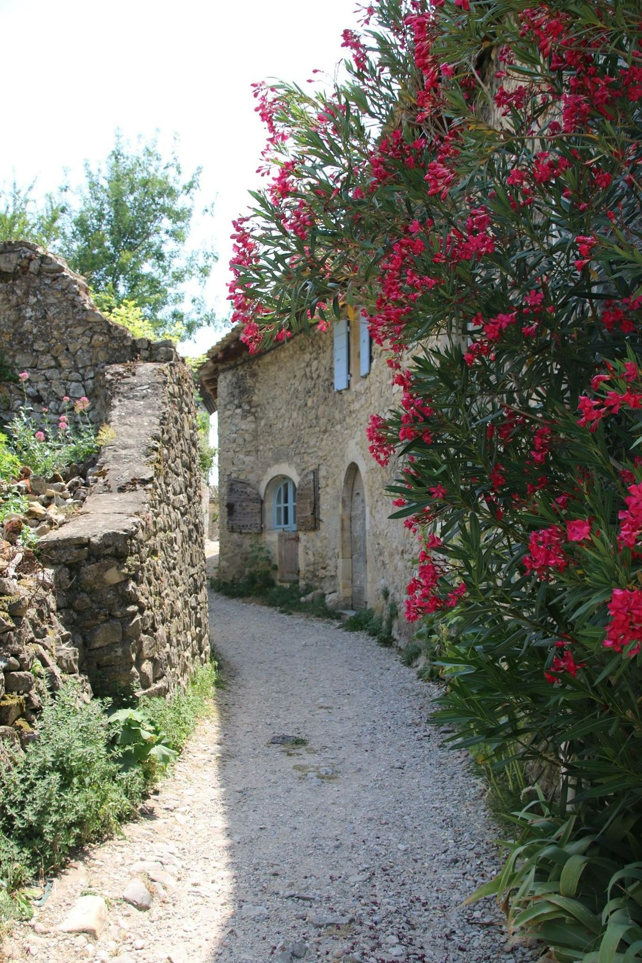 Mirmande , village classé permis les plus beau de France situé en Drôme Provençale