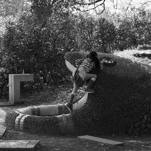 Battle with a snake Childhood Girls Kannatacchella Outdoors Park Park - Man Made Space Person Playing Relaxation Tree EyeEm Best Shots EyeEmBestPics EyeEmBestEdits