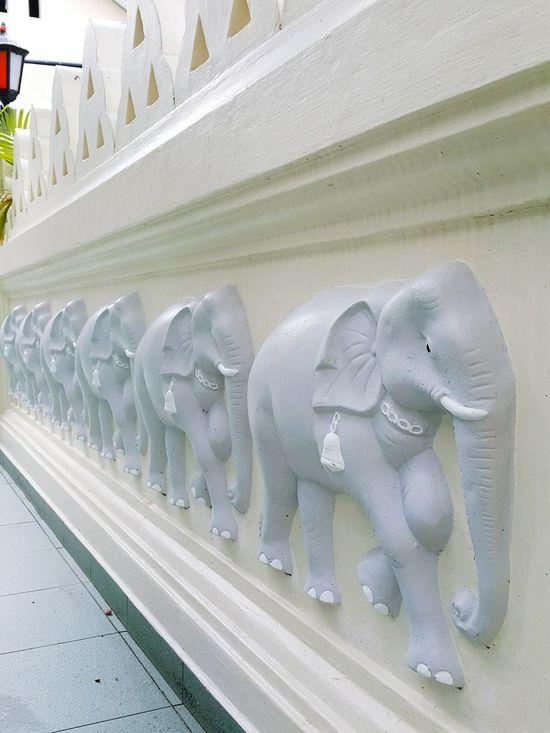 Mahindarama Buddhist Temple 培堤叶与果子 Taking Photos Sundayshooter Elephant Art 🎨