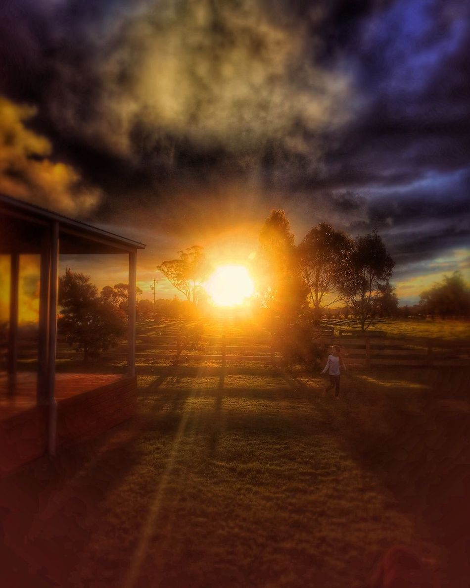 Happy thoughts... Sunset Tree Tranquil Scene Scenics Sunbeam Orange Color Beauty In Nature Sky Outdoors Bright Lens Flare Non-urban Scene Rural Scene Cloud - Sky Sunlight Landscape EyeEmbestshots Sunset #sun #clouds #skylovers #sky #nature #beautifulinnature #naturalbeauty #photography #landscape