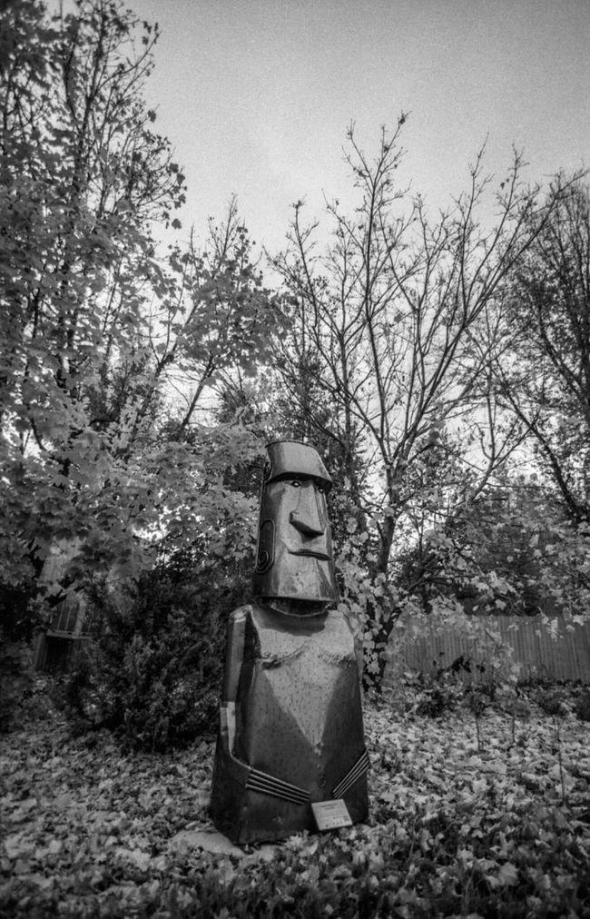 Statue Sculpture B&w Film Photography Canon EOS Elan Ishootfilm