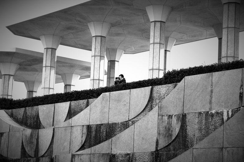 春が来たら花かな🌸🌹🌷 Taking Photos Japan CameraMan Black&white Shillouette あとは頼んだ オレ様💕