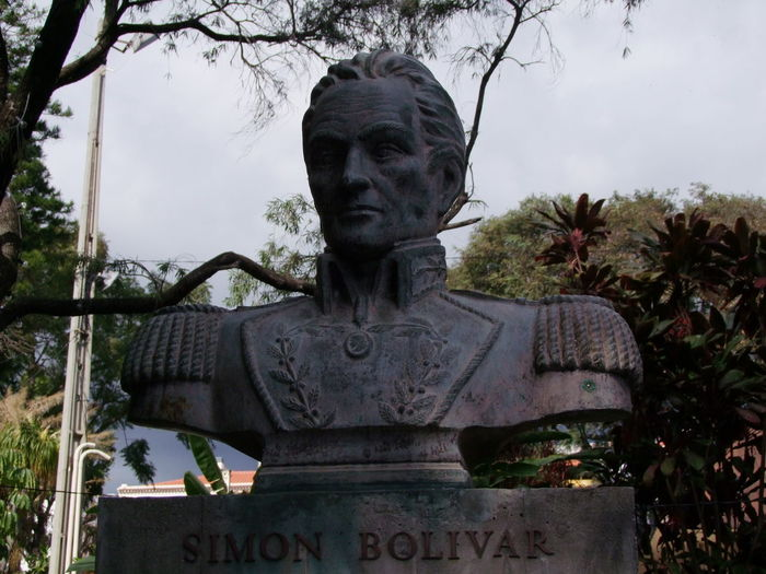 Bust of Simon Bolivar, Jardin Municipal, Avenida Arriaga Arts And Crafts Composition Funchal Madeira Portugal Simón Bolívar Statue Tourist Attraction  Bronze Bust Bronze Sculpture Bronze Statue Bust  Craetivity Famous Person Full Frame Grey Sky Head And Shoulders Only Human Representation Liberator Low Angle View No People Outdoor Photography Sculpture Travel Destination Tree