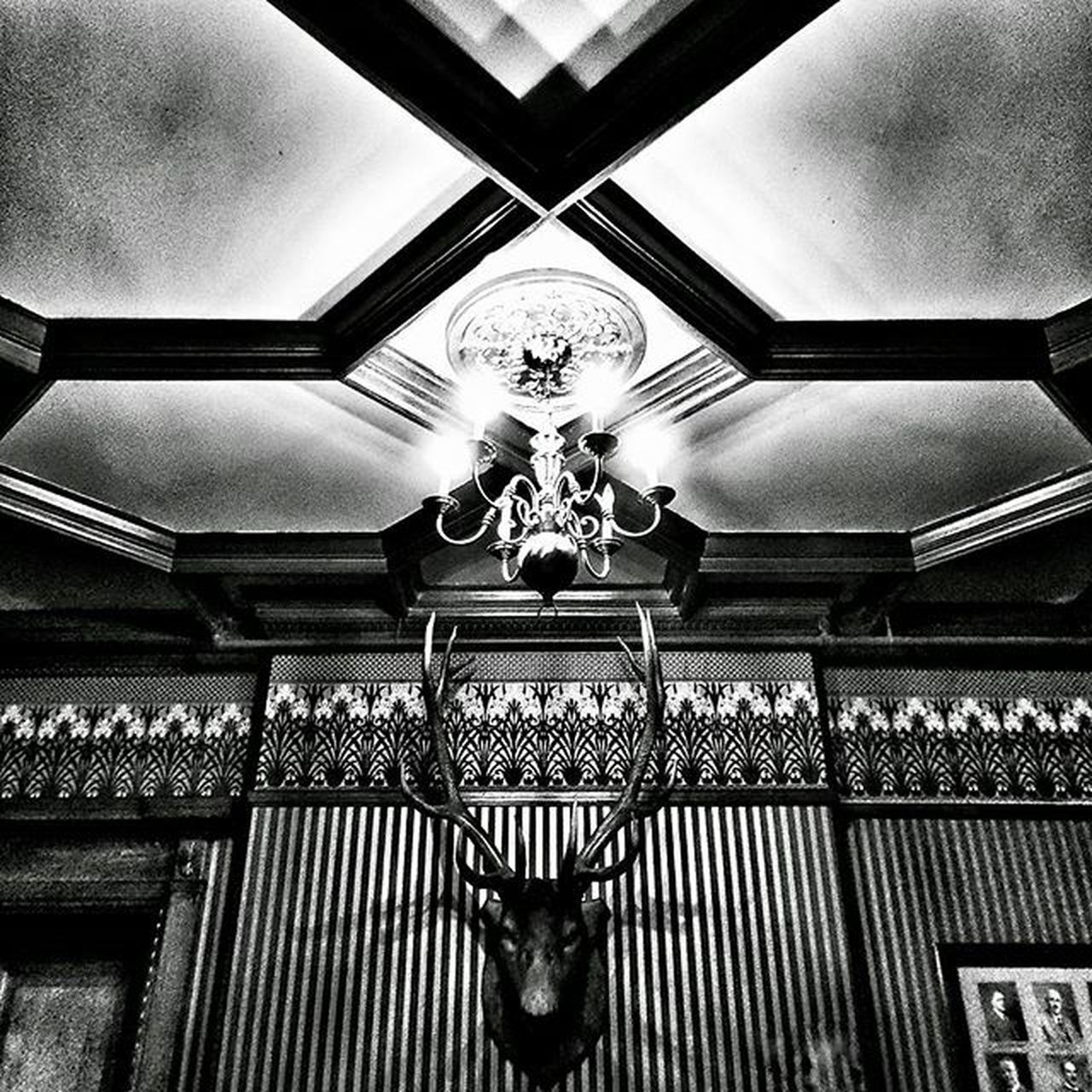 Back to the dark side HamOnt Scottishrite Deerhead Ceiling Decor Decoration Symmetry Blackandwhite Blackandwhitephotography Bnw