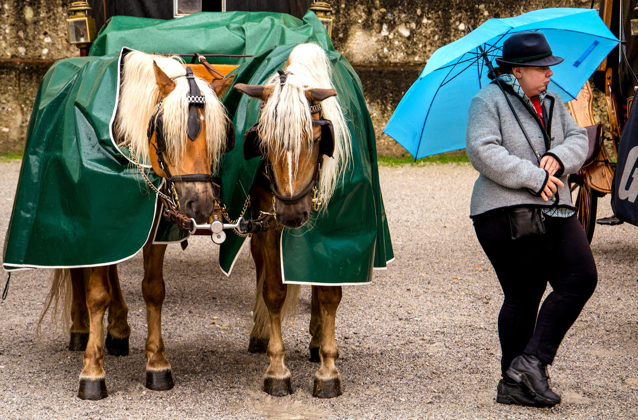 Rain Rain Rain Rain Salzburg Salzburg, Austria Horses Woman And Horses Curvymodel Curvy Model