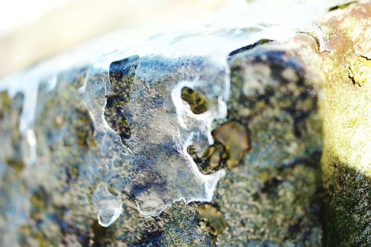 Naturephotography February Winter_collection Winter Nature Wintertime Winter Nature Outside Iced Over February 2016 Nature Iced Ice Ice On Rock Ice On Cliff Showcase: February Showcase February