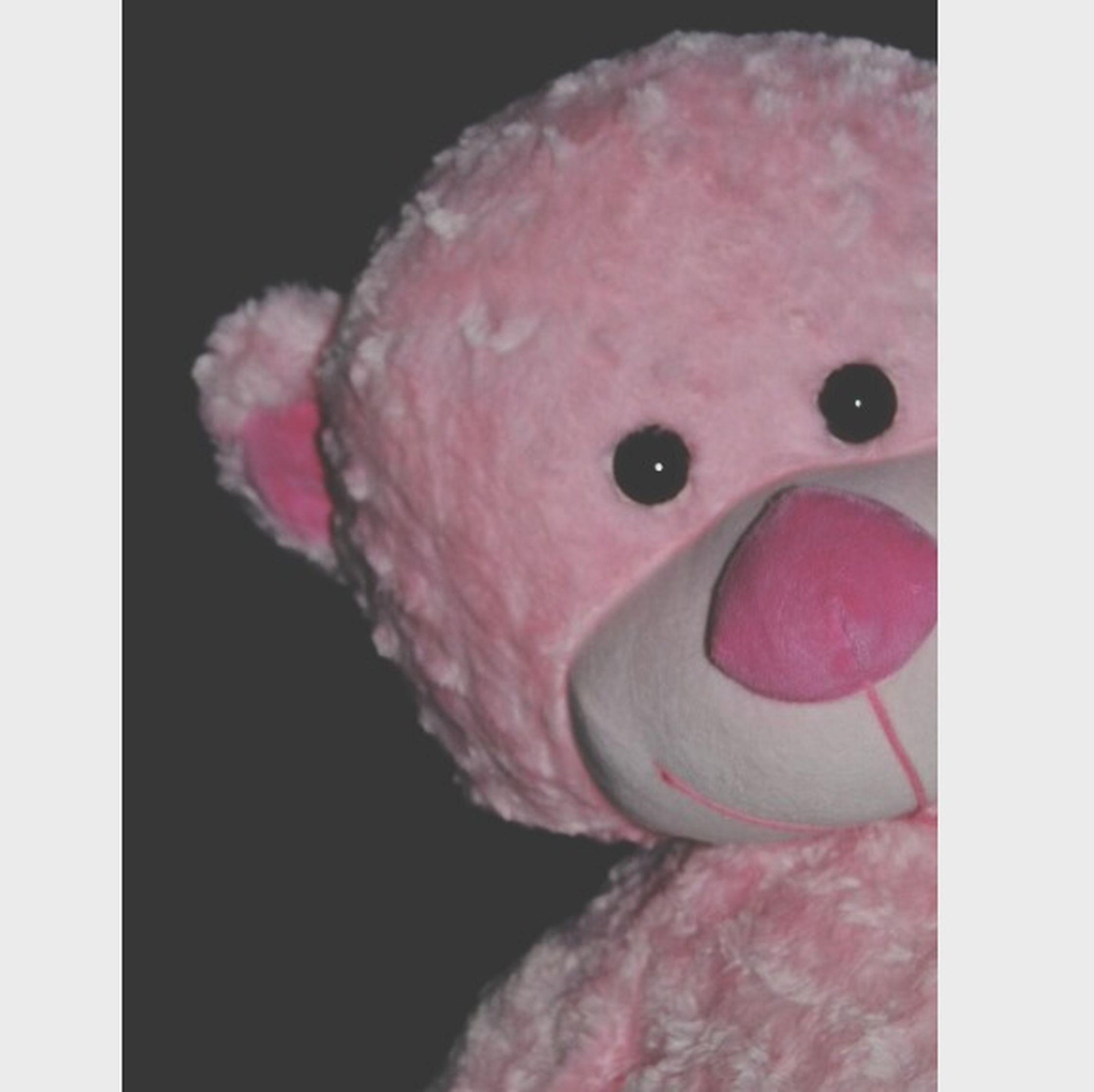 Bear Pink !