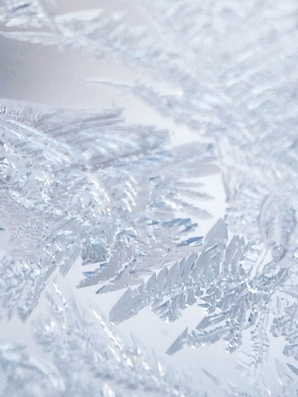 snow, cold temperature, winter, no people, white color, backgrounds, ice, frozen, full frame, close-up, ice crystal, snowflake, indoors, day, nature