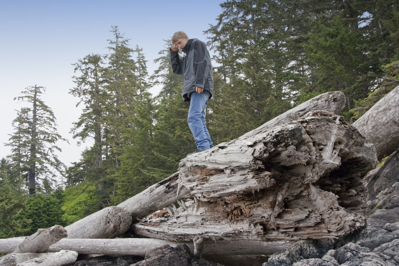Teenage Boy balancing on driftwood - Long Beach, Pacific Rim National Park, Vancouver Island, British Columbia, Canada Balance Balancing Act Bare Tree Boy Canada Deforestation Driftwood Forest Full Length Hiking Hiking Hikingadventures Leisure Activity Low Angle View Nature One Boy Only One Teenage Boy Only Outdoors Teen Teenage Boy Teenager Tree Tree Trunk Vacations Woods