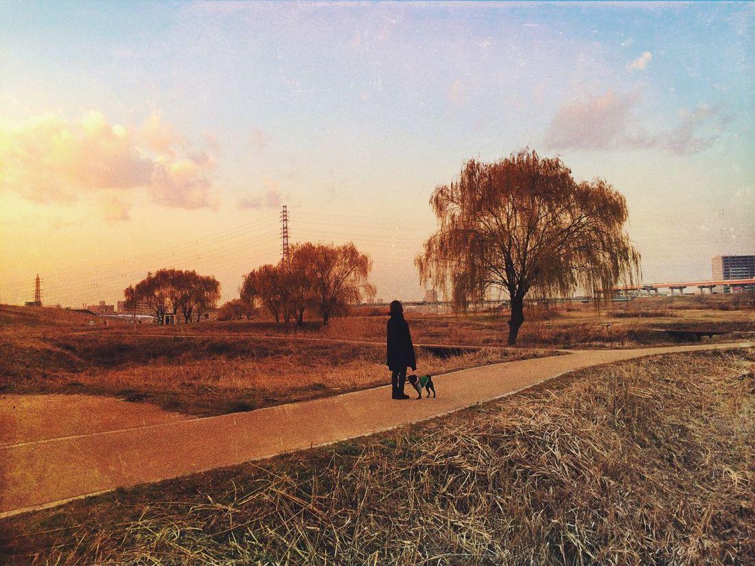 EyeEm Nature Lover Nature Landscape Trees Japan OpenEdit
