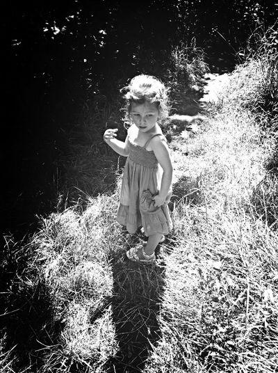 Black And White Monochrome Summer Adventure