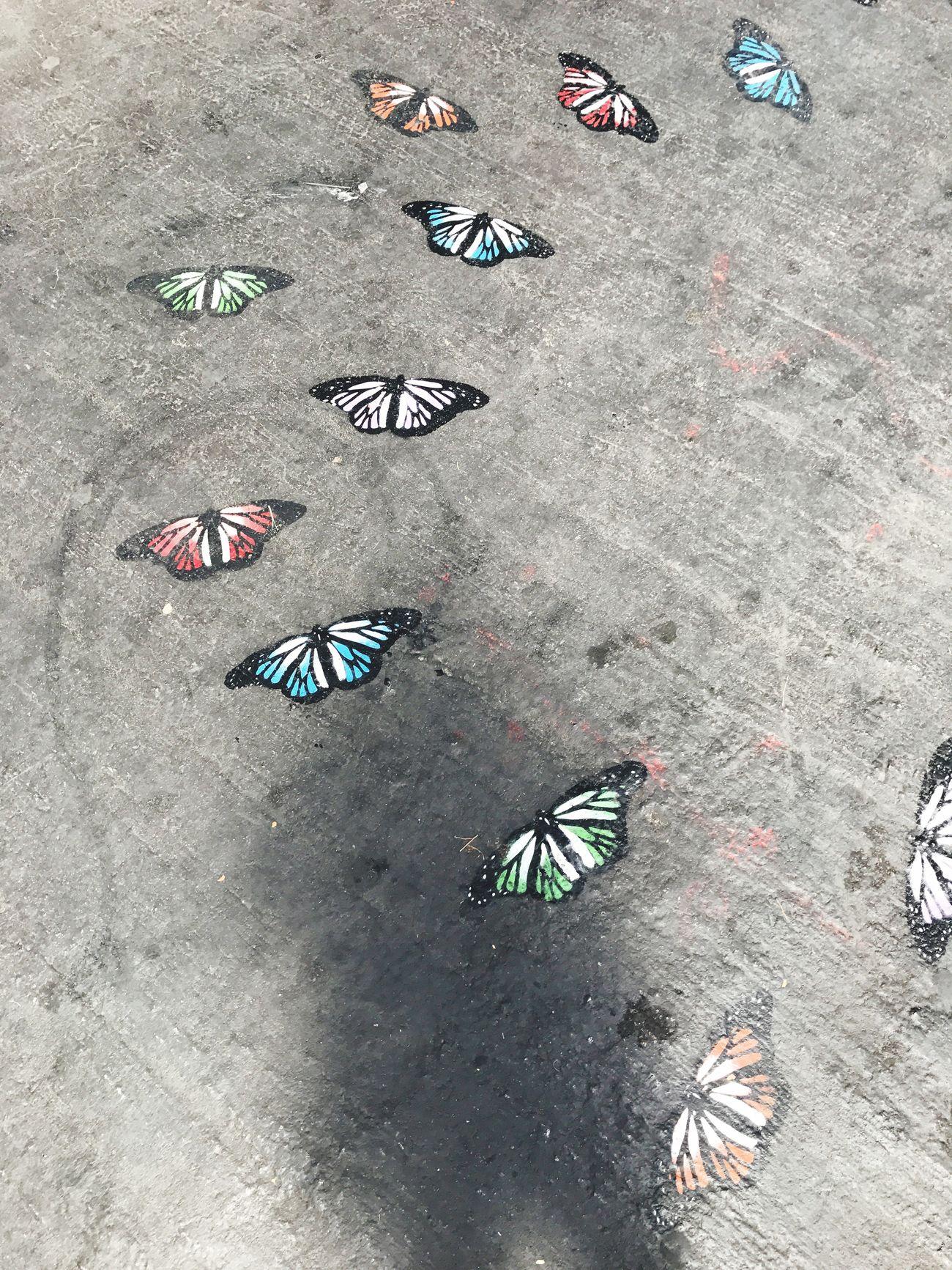 UrbanART Santiago De Chile Butterfly