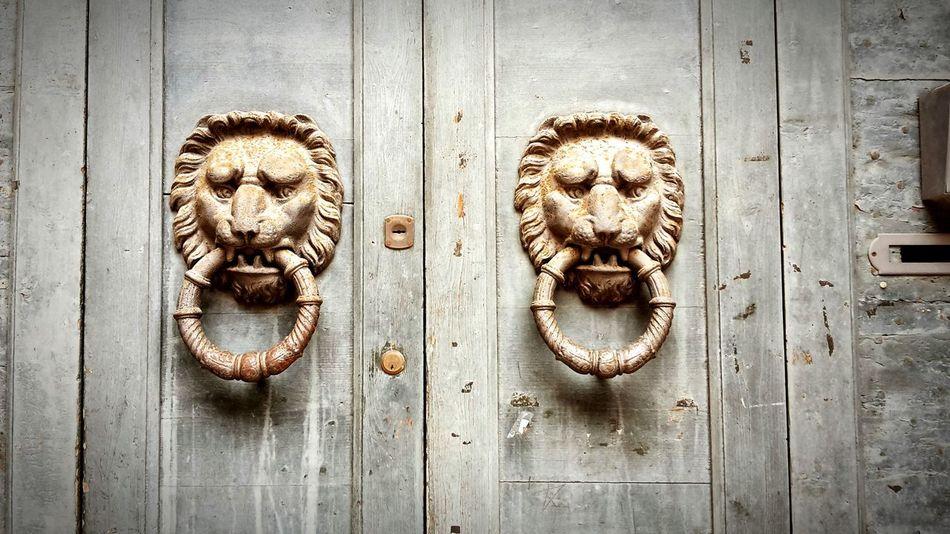 Doorknobs Ferrara Università Di Ferrara Architecture Doorknob Doorknobs Vintage Doorknob Emiliaromagna