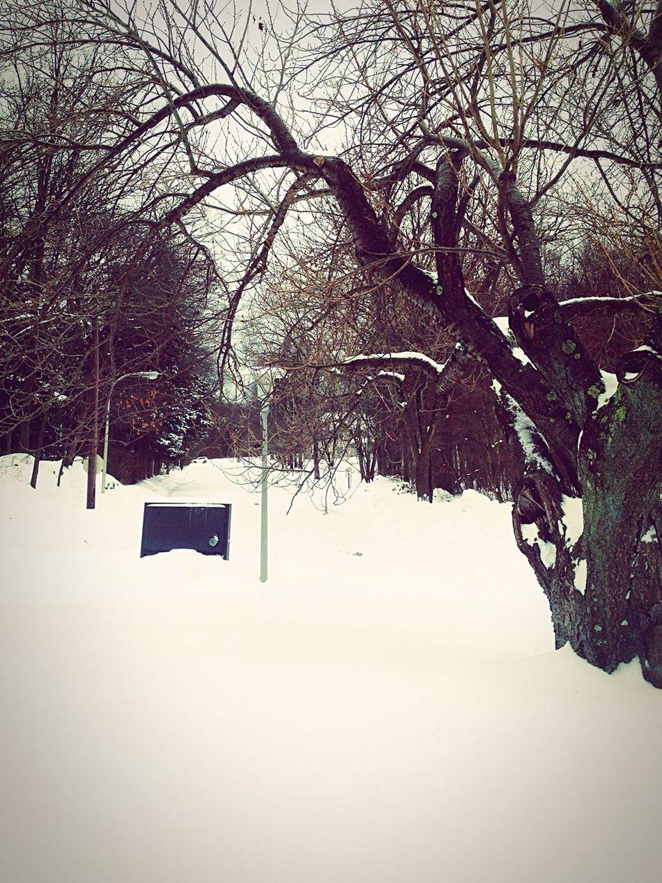 Snow Storm Workmode