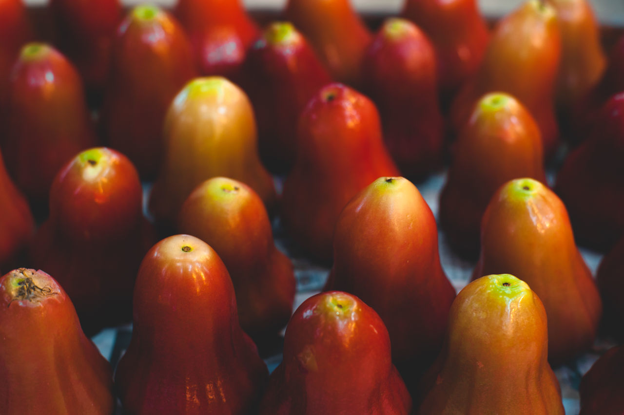 Abundance Backgrounds Champoo Close-up Day Farmer Market Food Food And Drink For Sale Freshness Full Frame Healthy Eating Large Group Of Objects Market Market Stall No People Outdoors Red Retail  Rose Apple Vegetable