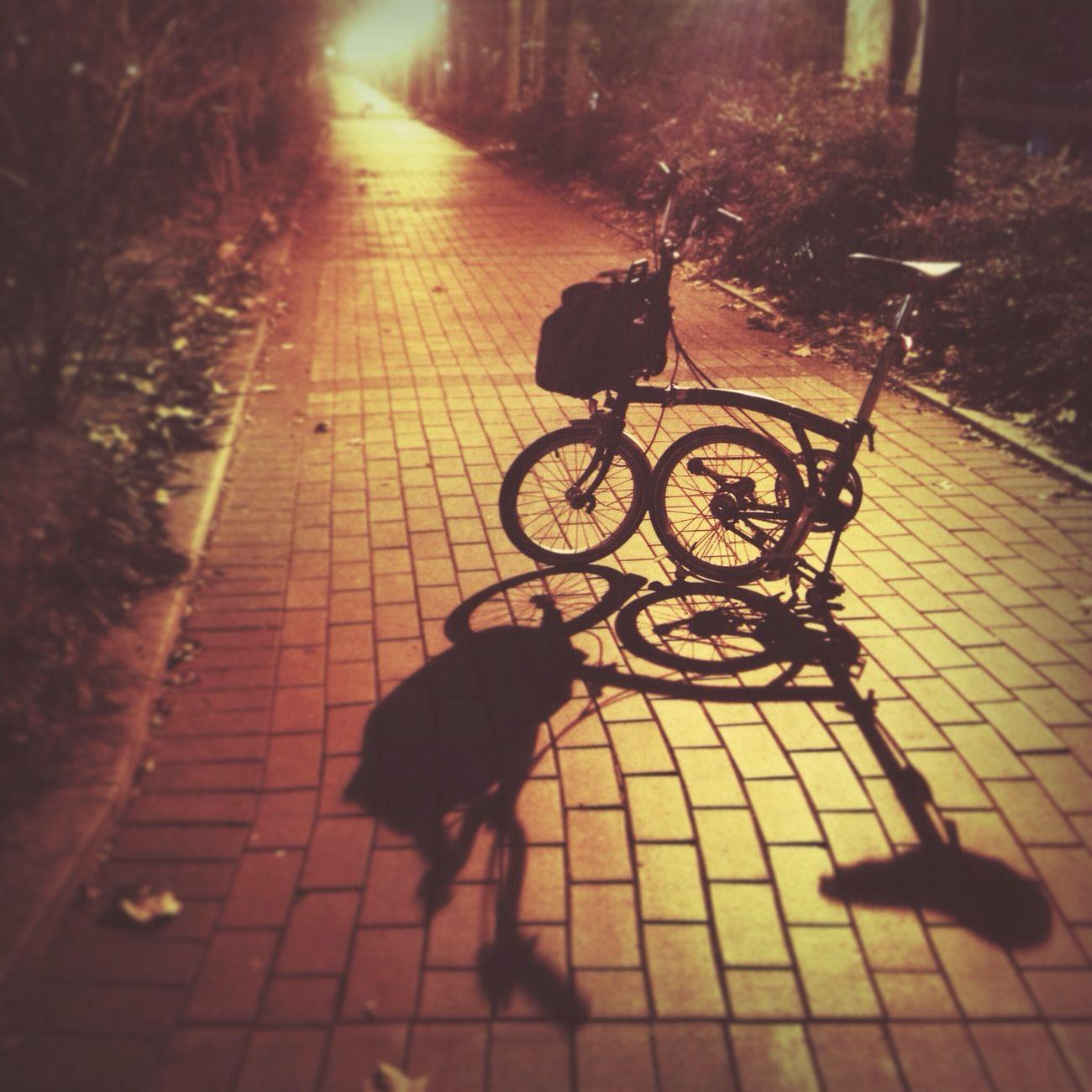 김광석길 2층, ㅎㅎ Brompton Bicycle Style