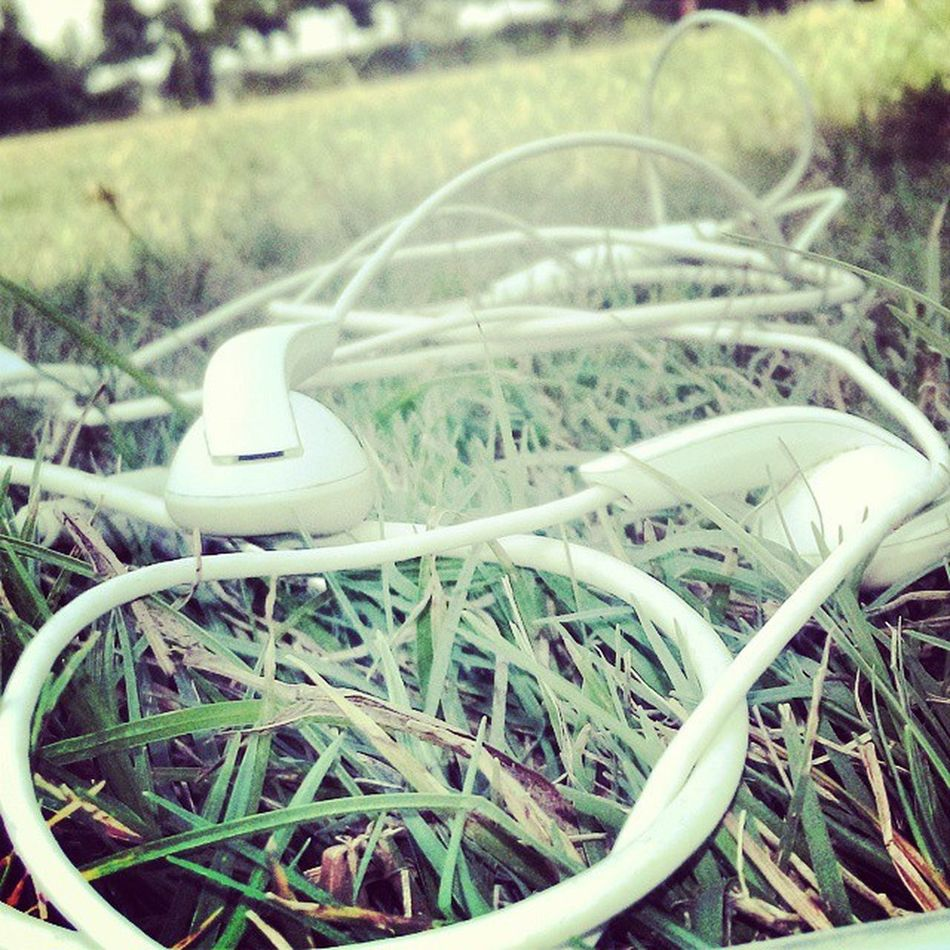 Endless_love_to_music ..