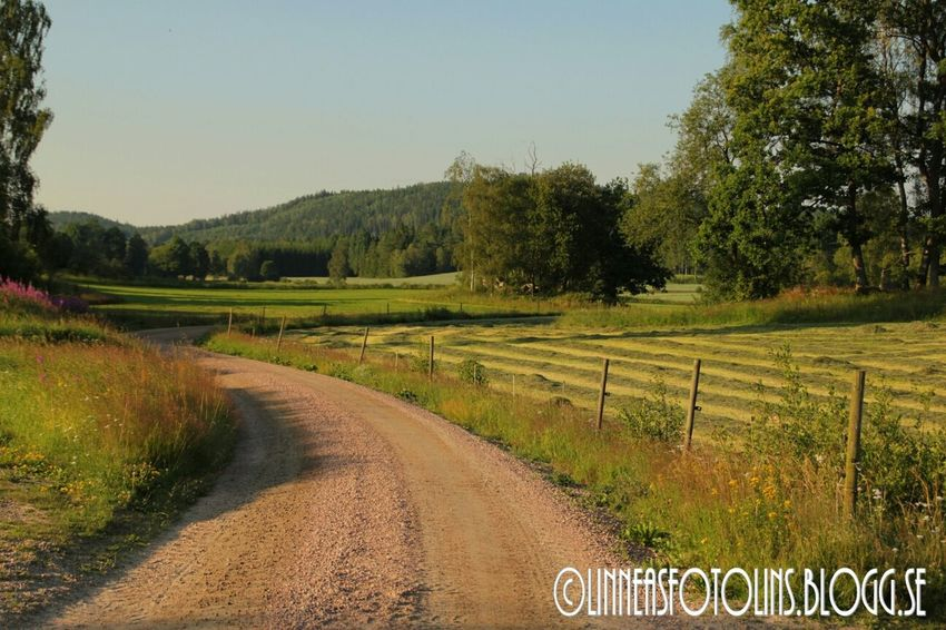 Summer Countryside Http://linneasfotolins.blogg.se home is where the heart is ❤ ❤ ❤