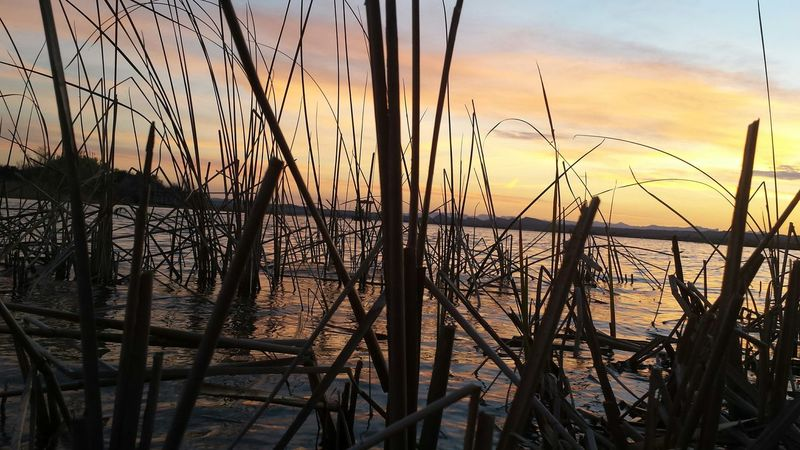 Nofilter Havasu Mesquitebay Sunsets Beautiful Lakehavasu
