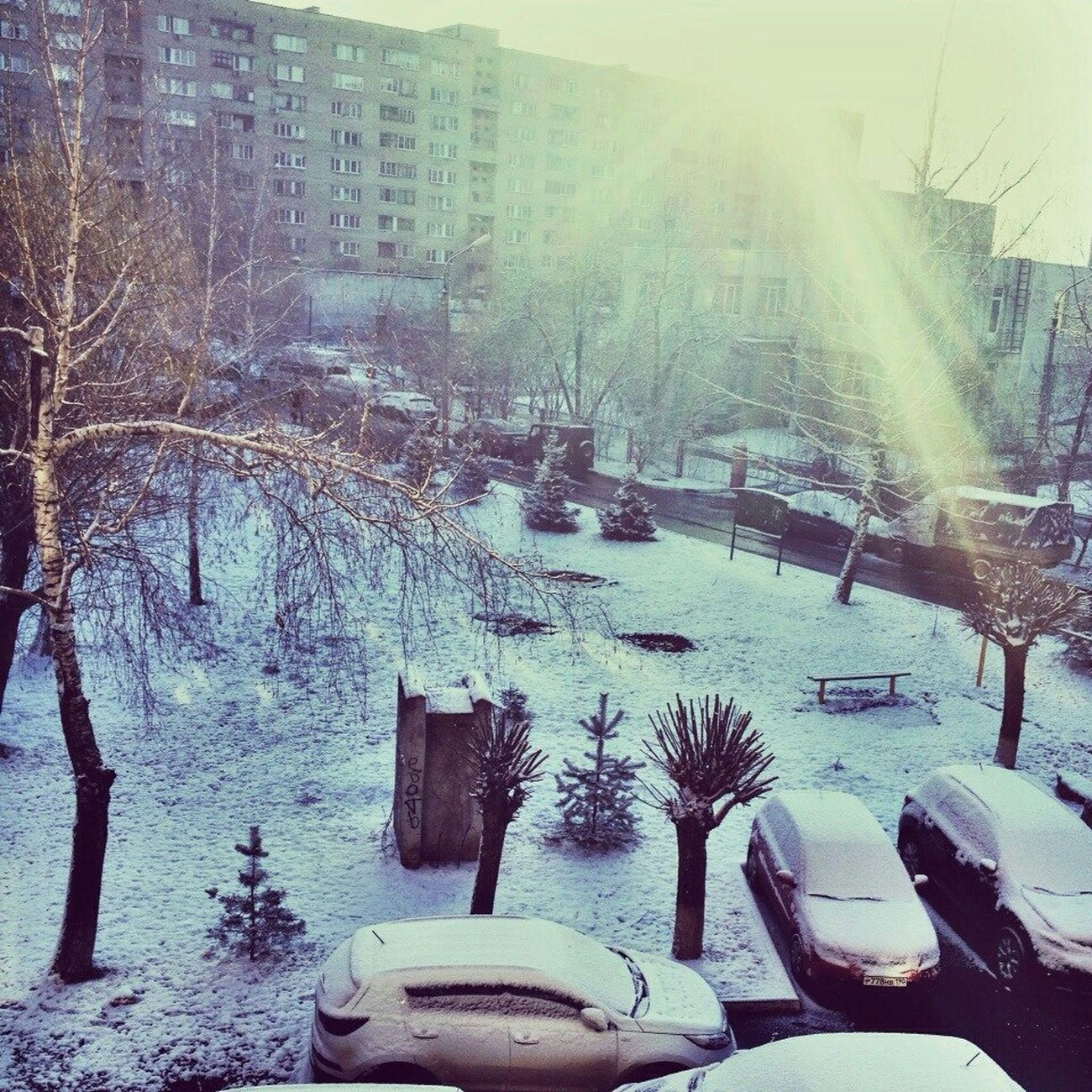 ВЕСНЕДОРОГУ весна снег Spring Springiscoming Snow ❄