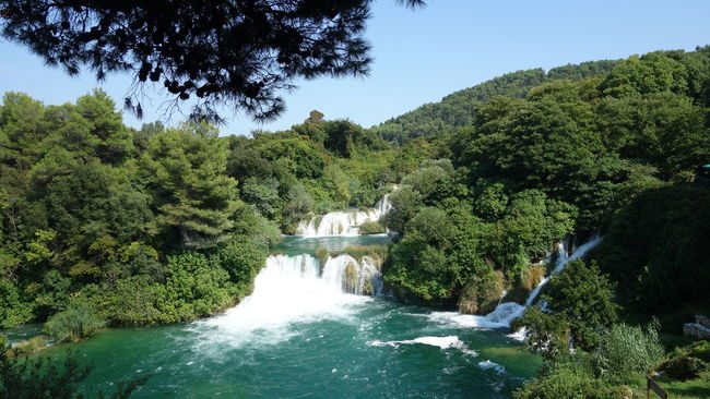 Amazing Place Amazing_captures Beautiful Beautiful Nature Beauty In Nature Croatia Croatia ♡ Exploring New Ground Green Hidden Gems  Holiday Krka Krka National Park Krka Waterfall Krkawaterfalls Nature Nature Photography Nature_collection Sunny Day Taking Photos Taking Pictures UNESCO World Heritage Site Vacation Watefalls Water_collection